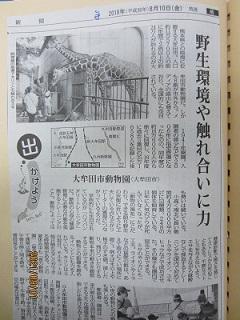大牟田日誌(767)